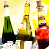 Şarap Hakkında